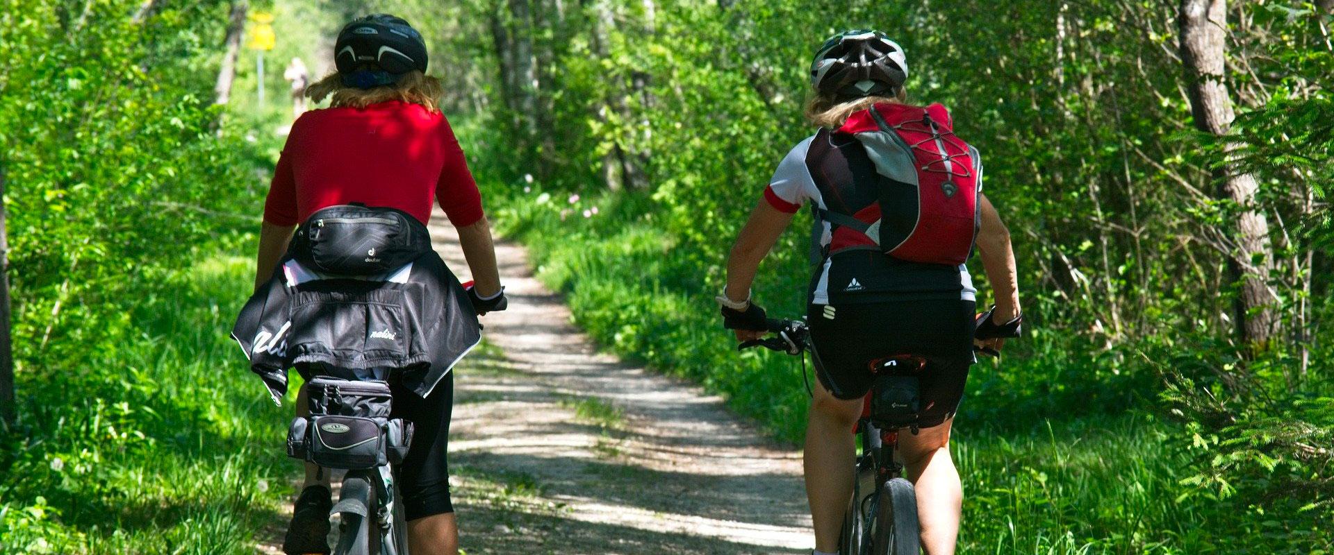 Profitez de randonnées à vélo à proximité de votre hôtel Le Prieuré de Boulogne